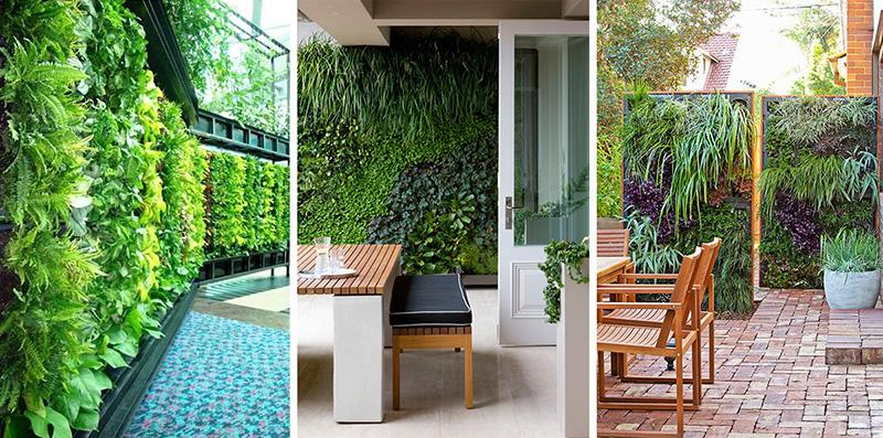 Garden Ideas Summer 2015